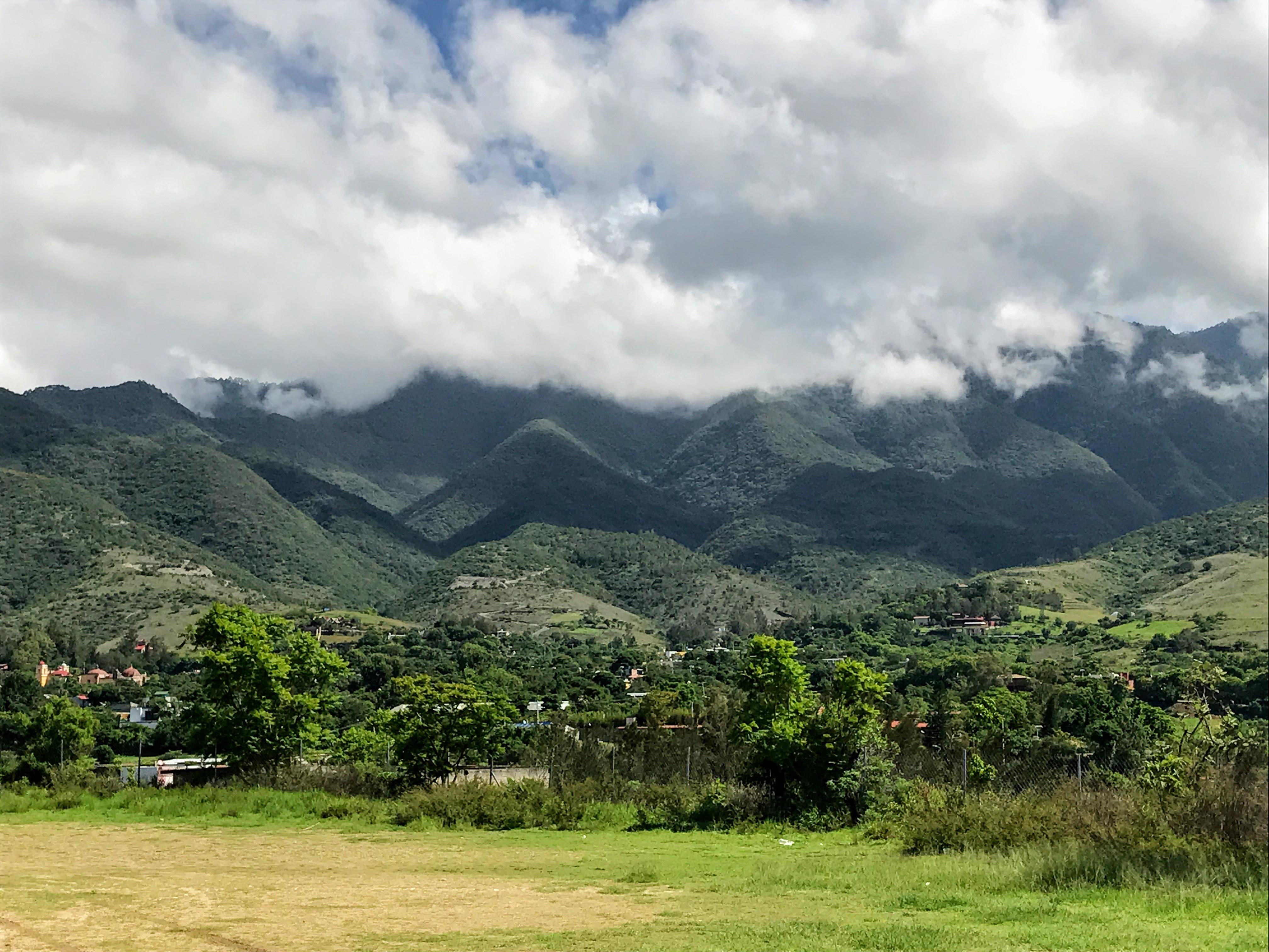 Ecologico Garden, San Andrés Huayapam