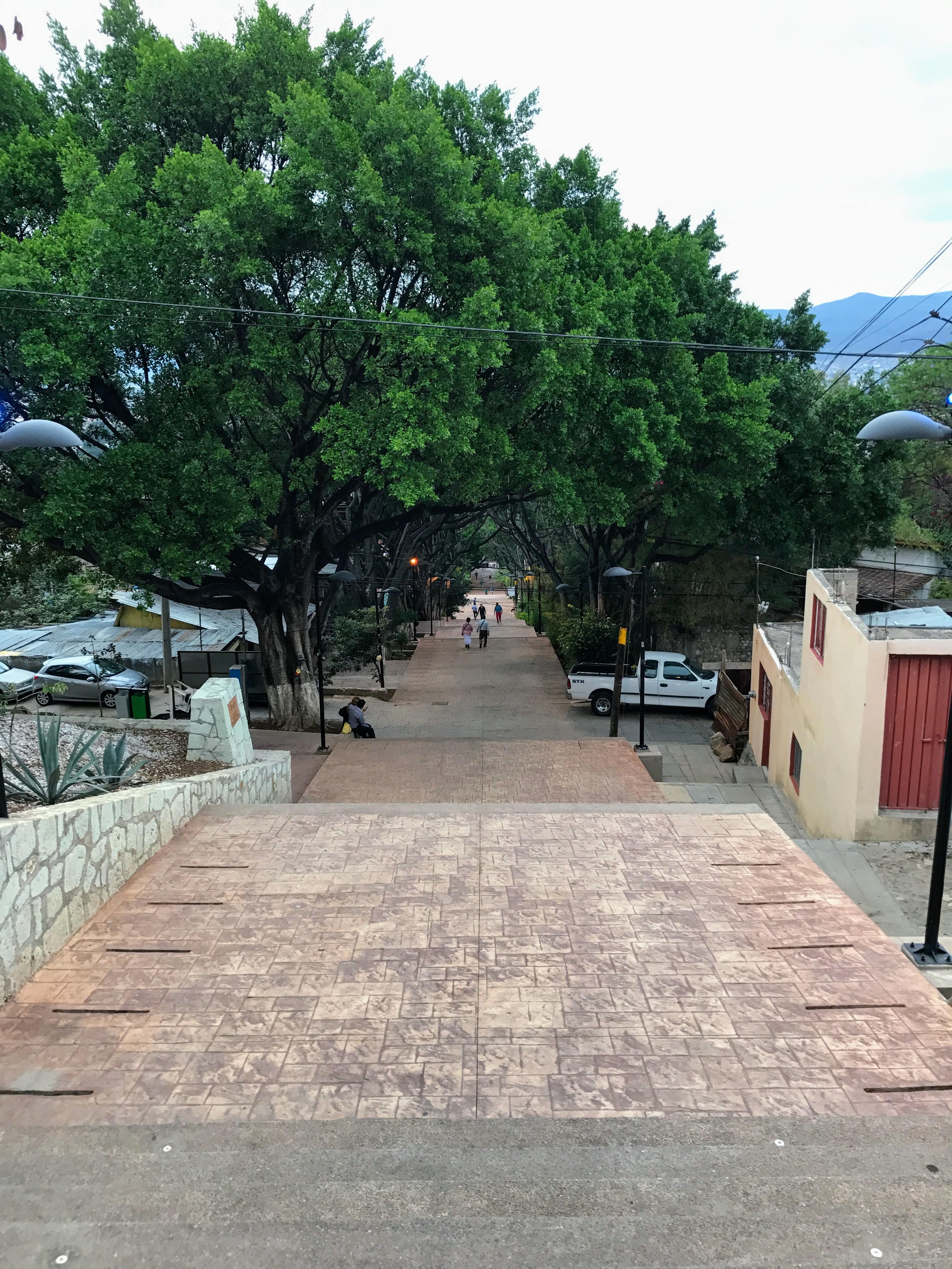Escaleras of Cerro del Fortin